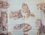 Les chats angoras Xavier de Poret pour Hermès