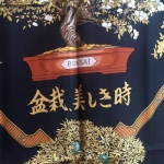 bonsai_hermes_noir-2448x2448